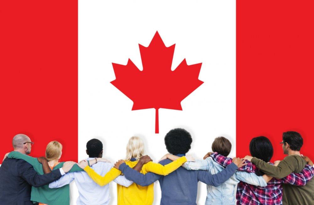 Kết quả hình ảnh cho Nên tự làm hồ sơ định cư Canada hay nhờ dịch vụ tư vấn