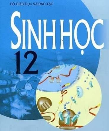 Hệ sinh thái sinh quyển và bảo vệ môi trường Sinh học 12