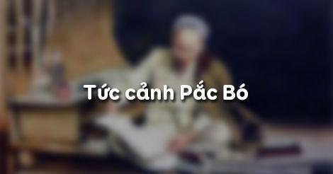 M3 Cảm nhận về bài thơ Tức cảnh Pác Bó của Hồ Chí Minh