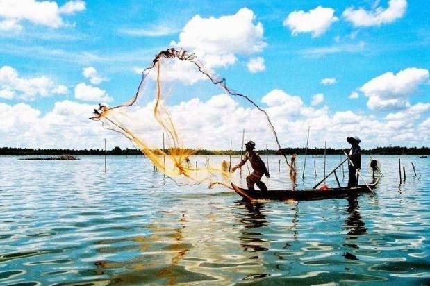 Trình bày cảm nhận về vùng đất Cà Mau qua bài Sông nước Cà Mau