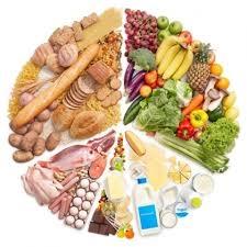 Các chất dinh dưỡng có trong thức ăn. Vai trò của chất bột đường