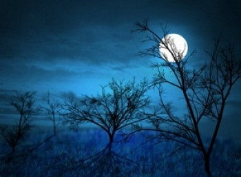 Suy nghĩ của em về vầng trăng trong bài thơ Ánh Trăng