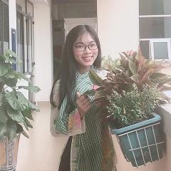 Nguyễn Hoàng Anh Thư